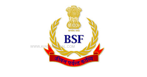 BSF Recruitment 2020 : 317 Constable, Head Constable and Sub Inspector vacancy.