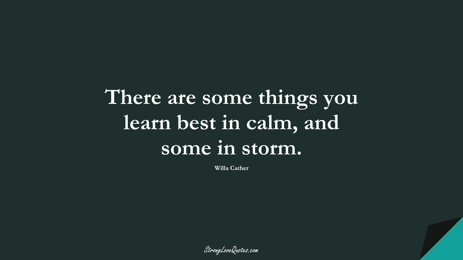 There are some things you learn best in calm, and some in storm. (Willa Cather);  #EducationQuotes