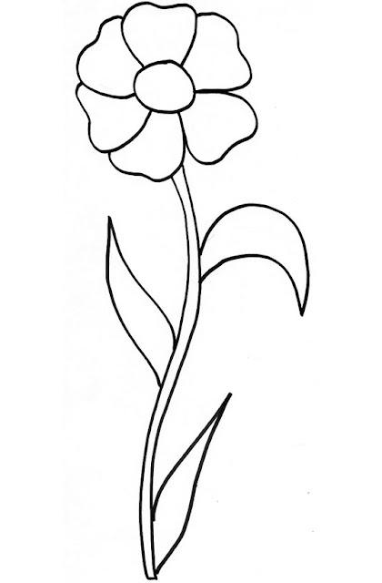 Fleur image coloration