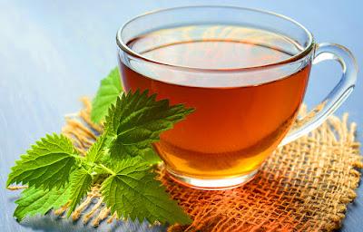 teh hijau obat kolesterol