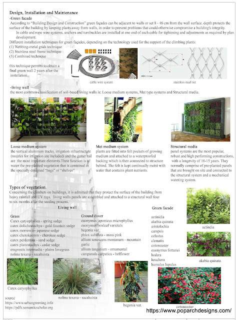 Types of vegetation in green wall