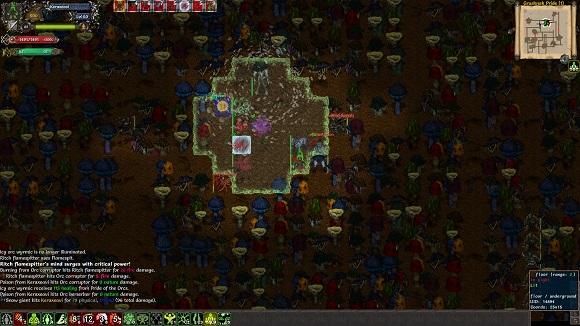 tales-of-majeyal-pc-screenshot-4
