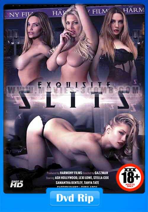 [18+] Exquisite Slits Harmony 2016 DVDRip 1GB Poster