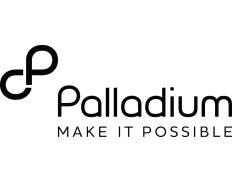 Job Opportunity at Palladium, Program Manager for Health