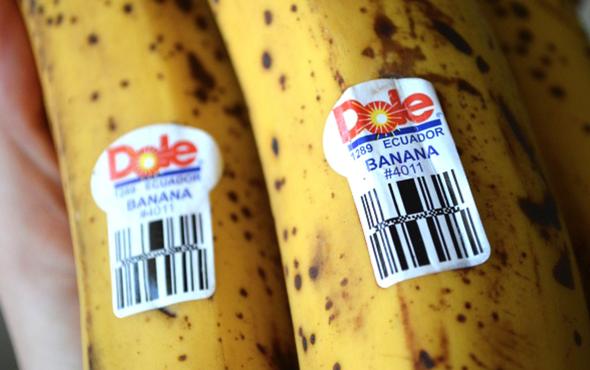 etichete fructe