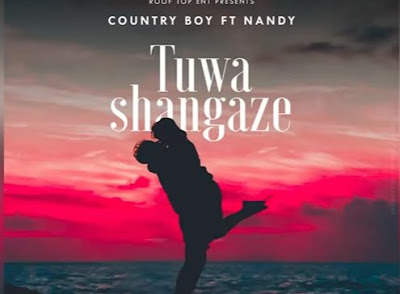 Audio | Country Boy Ft. Nandy - Tuwashangaze | Download Mp3