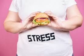 Udah Coba Berbagai Macam Diet, Tapi Tidak Ada Perubahan? Berikut Penyebabnya! The Zhemwel