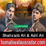 http://www.humaliwalayazadar.com/2016/09/syed-shahzaib-ali-syed-adil-ali-nohay.html