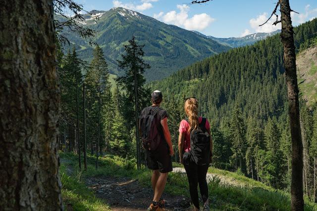 Waldwandern in Saalbach | Wanderung zu den Waldteichen am Maisereck | Saalbach - Maisalm - Wirtsalm - Waldteiche - Spielberghaus - Saalbach | Wandern-SalzburgerLand 07