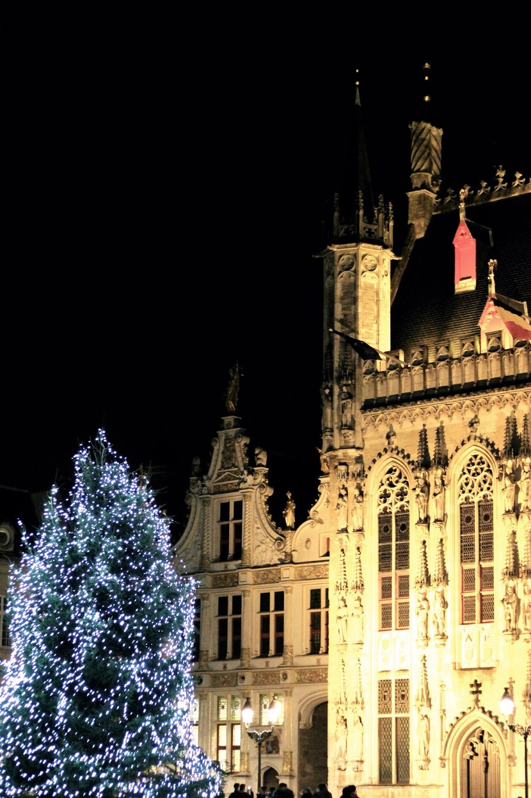 Bruges architecture at night during Christmas