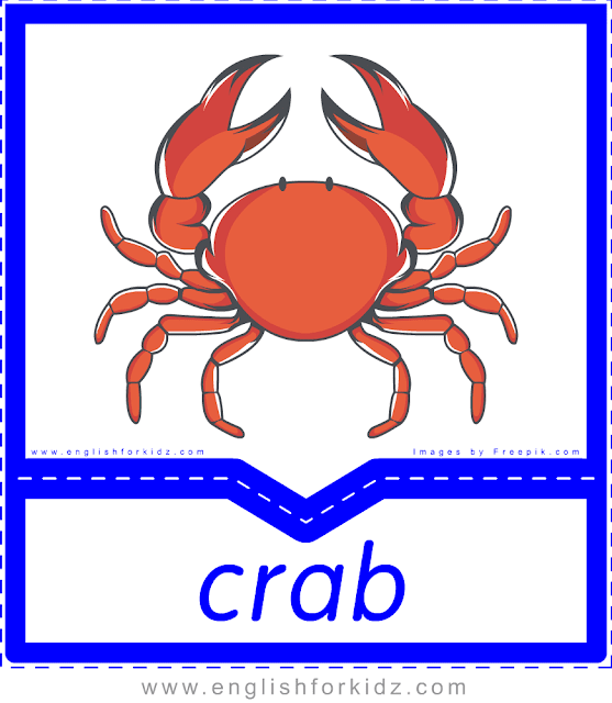 Crab - English sea food flashcards for ESL students