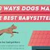 40 Ways Dogs Make the Best Babysitters #infographic