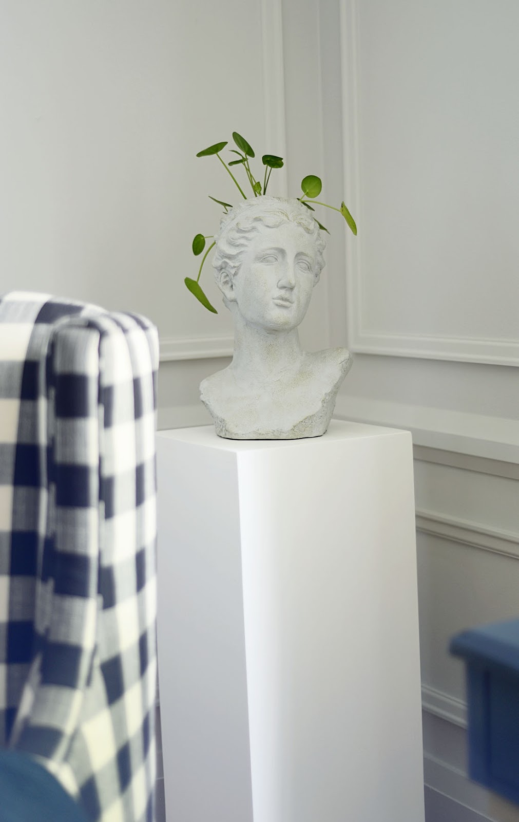 grecian bust vase, bust planter, planter on pedestal, moulding on walls, farrow and ball ammonite paint