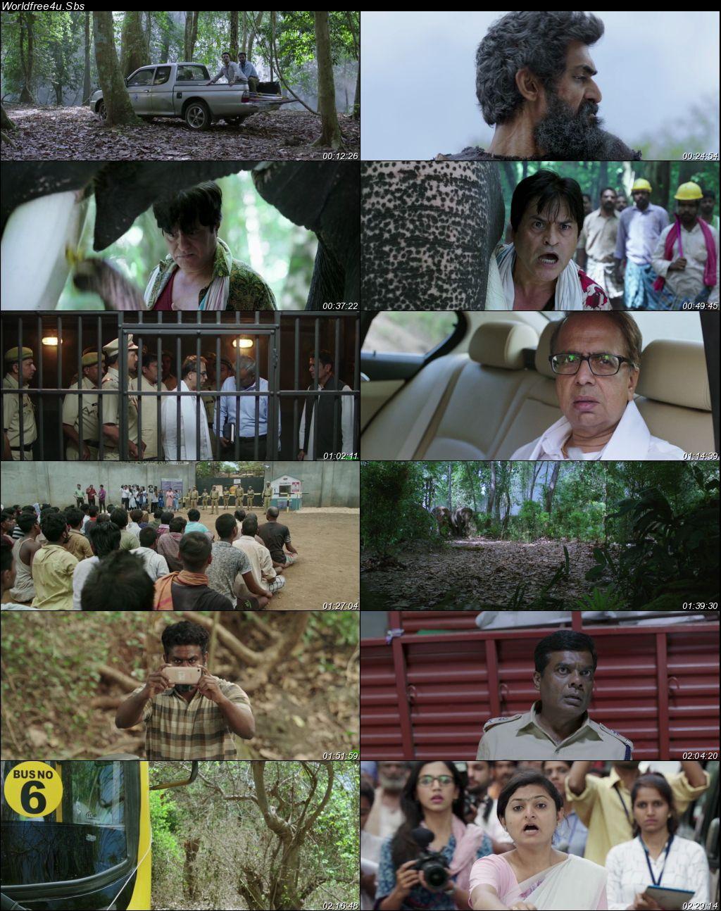 Haathi Mere Saathi 2021 Hindi Dubbed Movie Download    HDRip 1080p    720p    480p