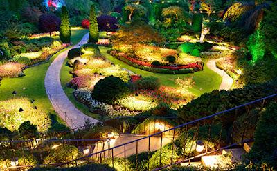 Les lumières égaient tout le décor d'un jardin