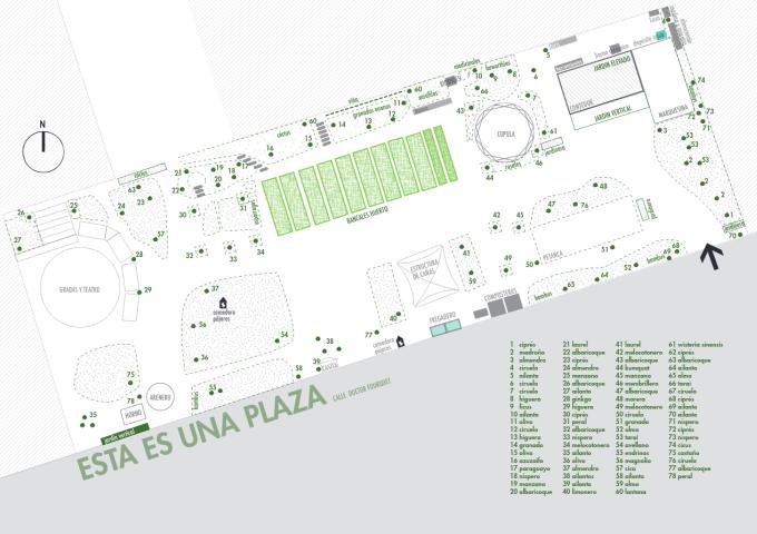 árboles en Esta Es Una Plaza