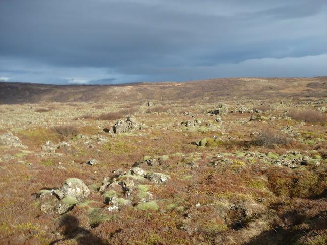 Lava Tour Landscape