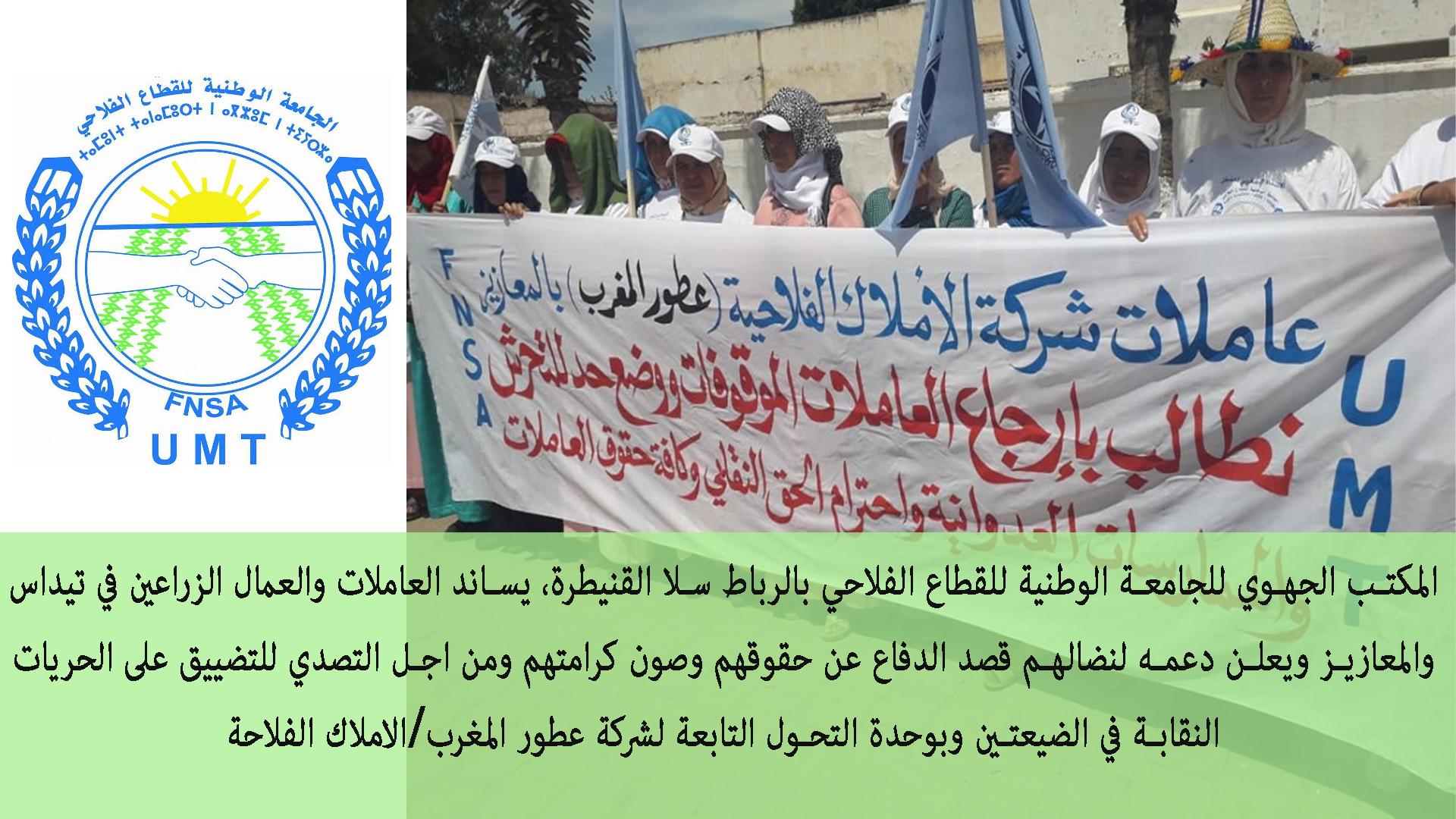وقفة احتجاجية سابقة للعاملات الزراعية بمنطقة المعازيز