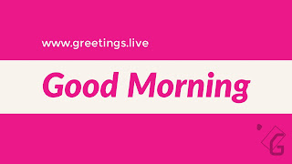 Good morning text in magenta colour over white Rectangular box touches both edges of image from left to right, over all image background is magenta colour.
