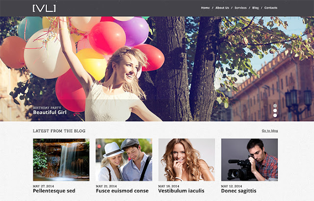 New Design And Photography WordPress Themes 2016