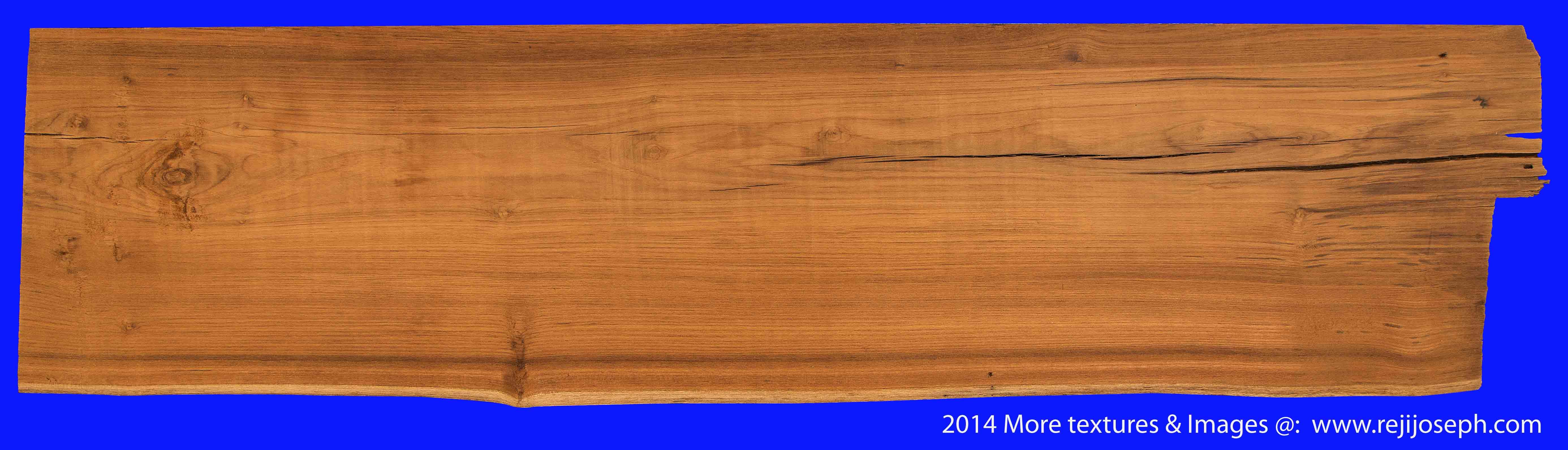 Plane Wood texture 00012