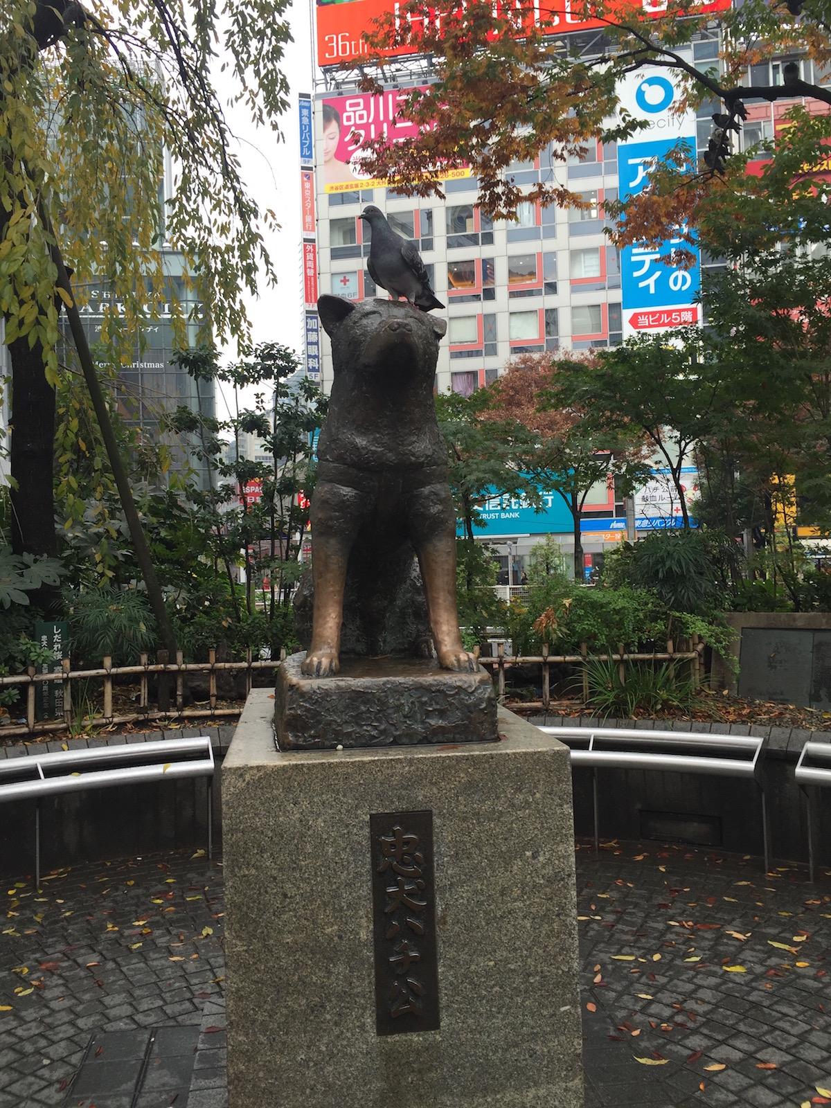 Tokyo Travel Guide Hachiko statue