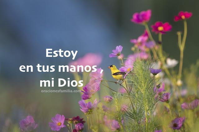 estoy en las manos de Dios, me protege, me cuida oracion de la mañana