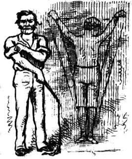 Queensland Figaro, 3 February 1883