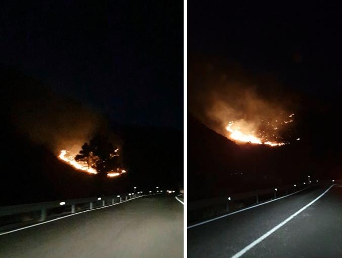 conato incendio Incendio en el Draguillo, Mogán, Gran Canaria