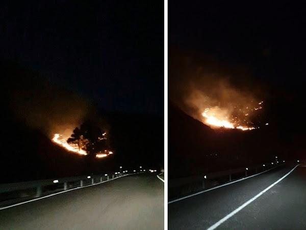 Incendio en el Draguillo, Mogán, Gran Canaria