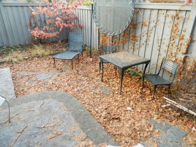 Cabbagetown Toronto Backyard Fall Cleanup Before by Paul Jung Gardening Services--a Toronto Gardening Company