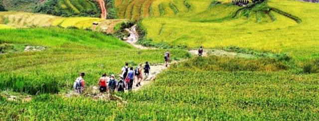 voyage au Vietnam organisé une agence locale
