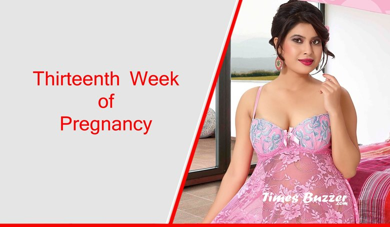 Thirteenth Week of Pregnancy
