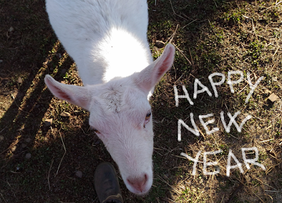 Happy New Year from a Goat