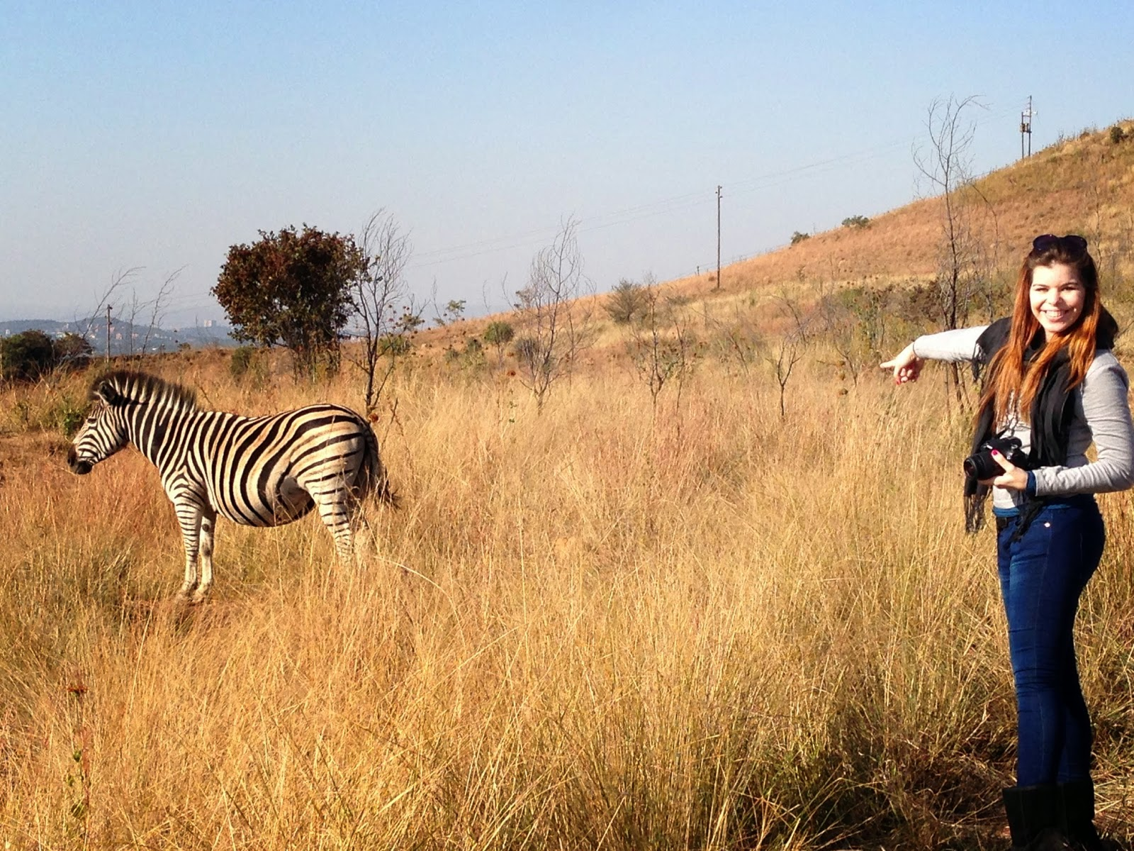 Groenkloof Nature Reserve, Pretoria