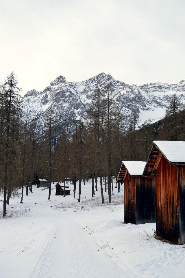 val fiscalina inverno ciaspole rifugio fondovalle