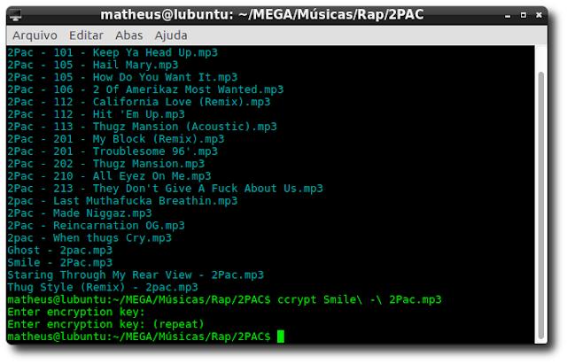 Criptografar arquivos pelo terminal com o ccrypt