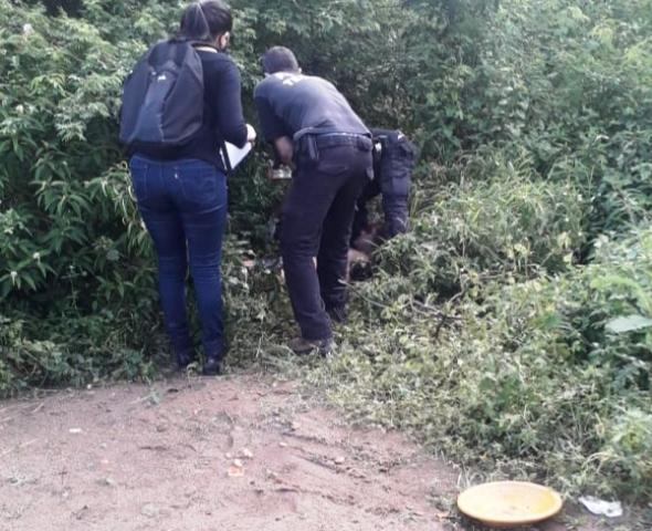Polícia registra 3 homicídios na quarta-feira (5) em Feira de Santana