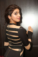 Pranitha Subhash in a skin tight backless brown gown at 64th Jio Filmfare Awards South ~  Exclusive 116.JPG