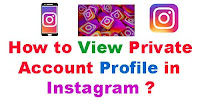 How to View Private account Profile in Instagram?