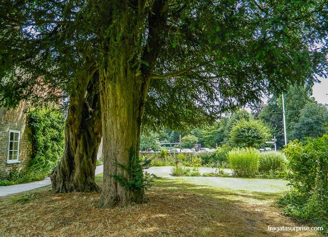 Jardim da casa de Jane Austen