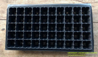 50 Cavity Seedling Tray