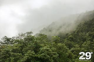 Bo hos en familj i Amzonas regnskog