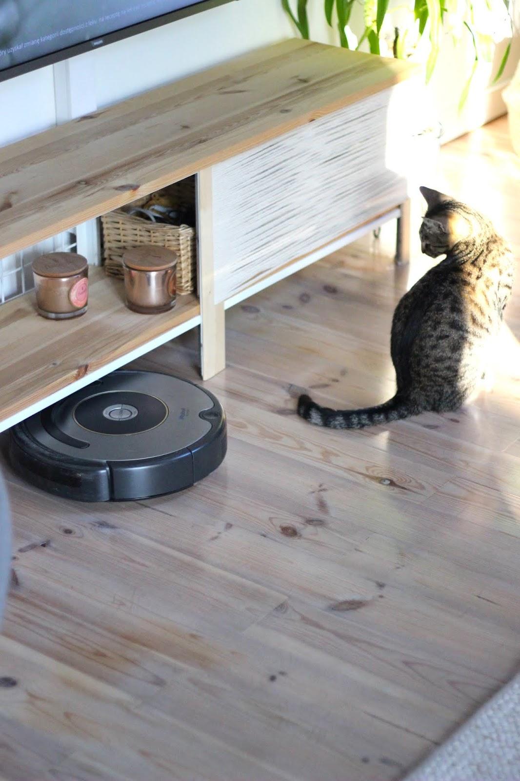 Stawiam na dobry sprzęt, czyli kilka słów o iRobot Roomba