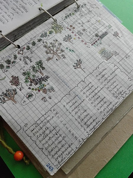 Maggio nell'orto biologico: mappa dei fiori