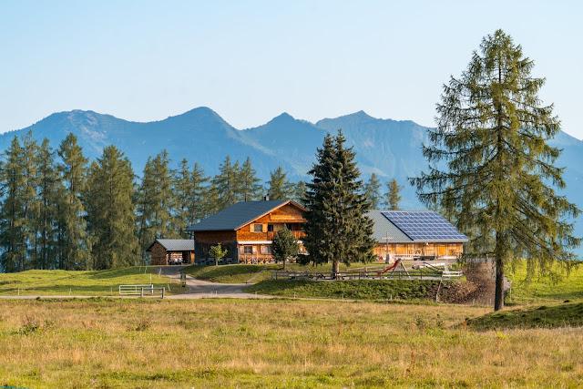 Kulinarische Genusswanderung – Bürserberg | Wandern Brandnertal | Wanderung Vorarlberg 03