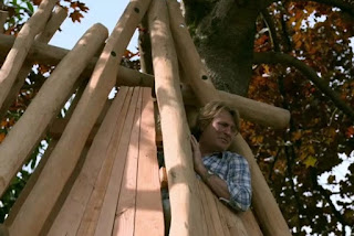 David building a tree house