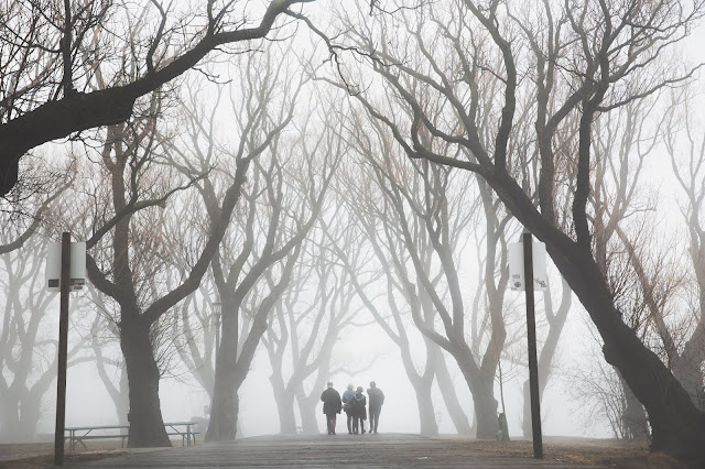 A Backward Walk by SabeerWrites
