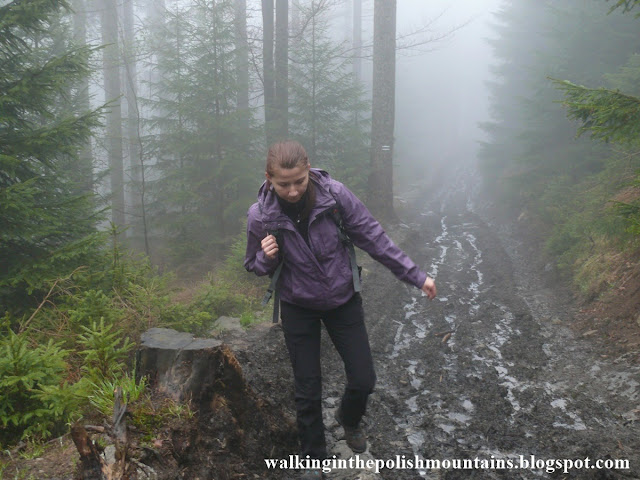 http://walkinginthepolishmountains.blogspot.com/2017/05/rudawiec.html