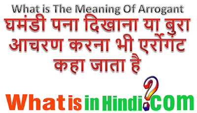 What is the meaning of backchodi in Hindi